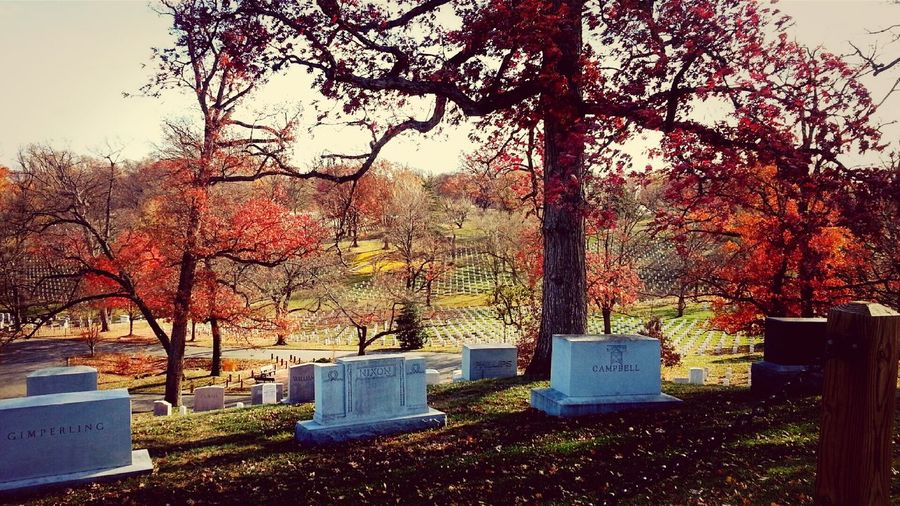 a view of Arlington national cemetery Eyeem Emotional Photography Eyeem Shot As Is Arlington National Cemetary Washington, D. C. Washington
