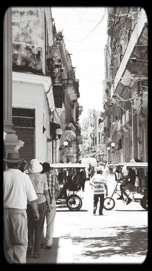HabanA Monochrome Cityscapes