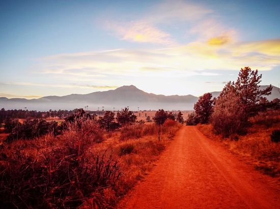 Roads that lead to nowhere Nature Landscape Scenics Tranquil Scene Road Sky The Way Forward Beauty In Nature Tranquility Mountain No People Tree Growth Plant Sunset Day Outdoors First Eyeem Photo EyeEmNewHere Colour Your Horizn
