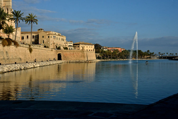 cityscape of medieval buildings near the sea in Palma of Mallorca Palma De Mallorca Architecture Built Structure Cityscape Highlights Water Travel Destinations Waterfront Outdoors No People Building Exterior Medieval Wall Palm Tree Plant Tropical Climate The Past History Postcard Water Splashes Nature