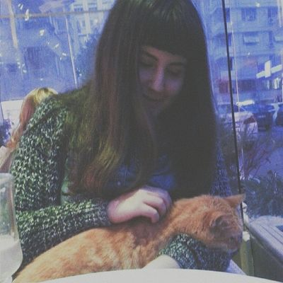 Cat. Cat Catlove Instaanimal Instapic orange tarçın adana girl rest relax hair