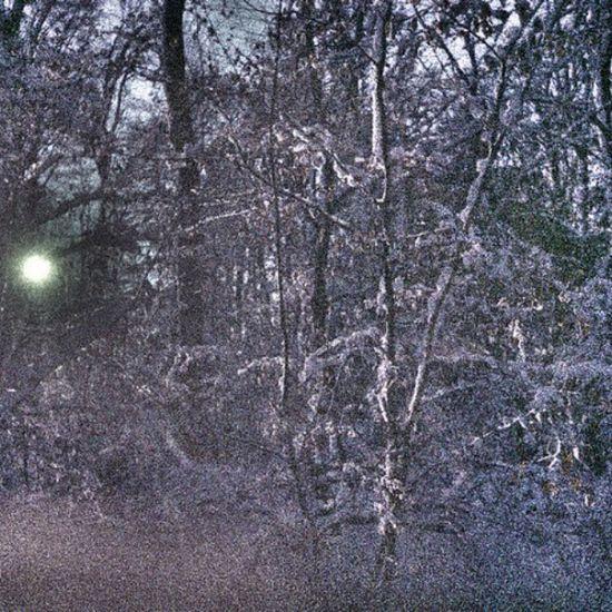 wintery forest on expired film von McMac70 auf Flickr. Folge diesem Link, um dieses Foto anzuzeigen und zu kommentieren: https://flic.kr/p/tnSMfa Film Film135 Natur Natur Expired Expiredfilm Schnee Snow Winter Wald Forest Baum Tree