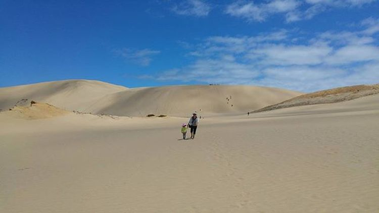 sand dunes Northland New Zealand