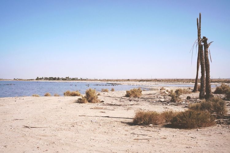Landscapes With WhiteWall Desert Salton Sea