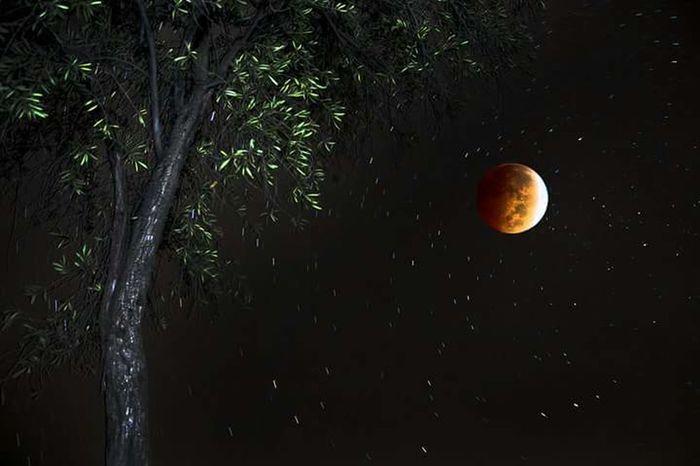 Superimpose Bloodmoon Photoshop Long Exposure Nightphotography Sky