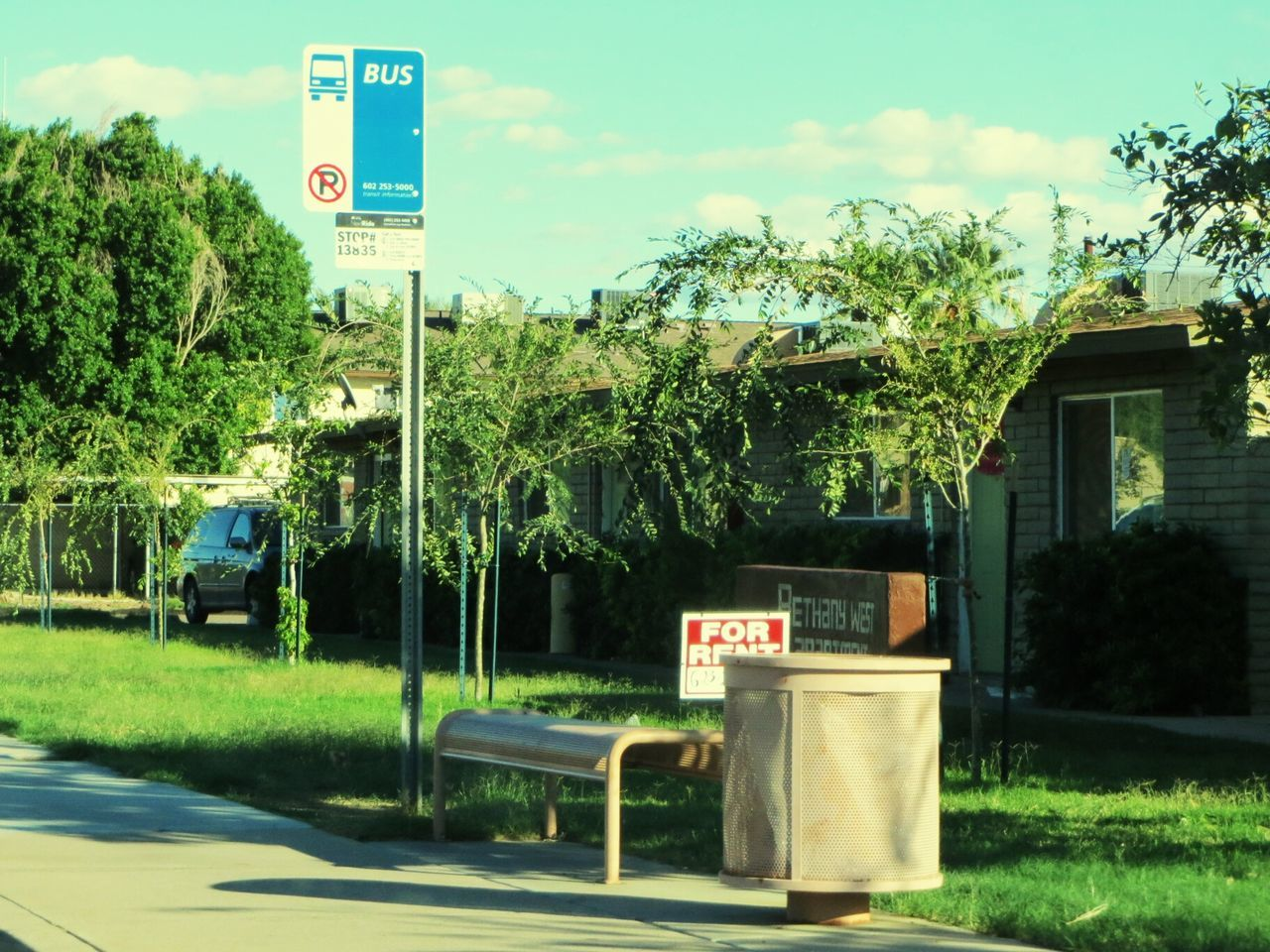 communication, text, tree, road, transportation, sky, road sign, growth, day, outdoors, no people, grass