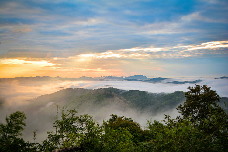 Morning scene sunrise landscape beautiful on hill with fog misty cover forest and mountain background on season winter sun rays - Phu Bo Bit , Loei , Thailand Autumn Background Beautiful Beauty Blue Cloud Cold Colorado Colorful Countryside Dawn Early Europe Evening Finland Fog Foggy Forest Green High Lake Landscape Lapland Light Mist Misty Morning Mountain Mountains Nature Park Scene Scenery Scenic Season  Sky Slovakia Spring Summer Sun Sunlight Sunrise Sunset Tranquil Travel Watercolor White Winter Wonderland Wood