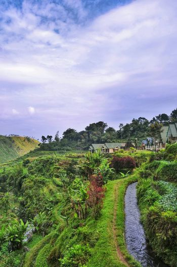Check This Out Landscape_photography Taking Photos Eyemnaturelover Photography Eyem Gallery EyeEm Indonesia Savetheearth Smallvillage Hello World