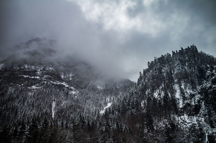 dreary weather Bad Weather Beauty In Nature Cloud - Sky Dark Clouds Dreary Dreary Weather  Forest Gloomy Landscape Mountain Mountainside Mystic Nature No People Outdoors Power In Nature Rocks Scenics Sky Snow Stone Walls Tranquil Scene Tranquility Tree Winter The Great Outdoors - 2017 EyeEm Awards The Great Outdoors - 2017 EyeEm Awards Shades Of Winter