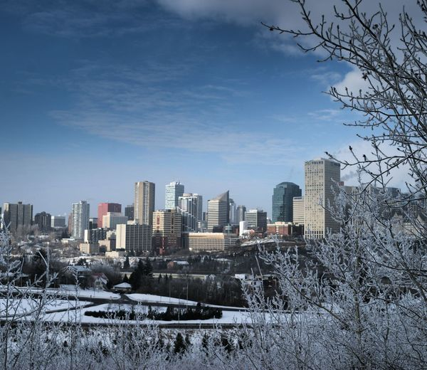 Architecture Bare Tree Building Exterior Built Structure City Cityscape Cold Temperature Day Growth Modern Nature No People Outdoors Sky Skyscraper Snow Tree Urban Skyline Winter