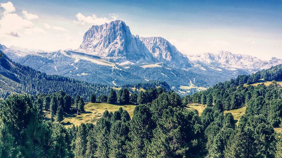 Trentino Italy