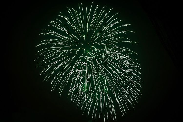 Fireworks Low Angle View Night Illuminated Firework Exploding Celebration Arts Culture And Entertainment Event Sky Light Motion Firework Display No People Glowing Nature Long Exposure Outdoors Firework - Man Made Object Blurred Motion Plant