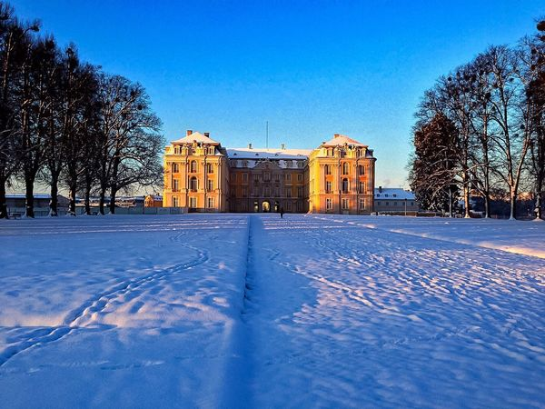 Winter in Germany EyeEm Nature Lover EyeEm Best Shots EyeEm Selects EyeEm Gallery Architecture Tree Cold Temperature Built Structure Blue Building Exterior Nature Building Outdoors Sunlight Winter Clear Sky No People Sky Snow Plant Day Frozen Covering