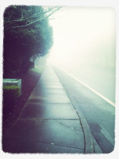 dark foggy morning