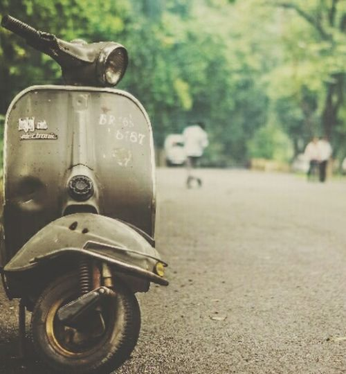 Focus On Foreground Road Stationary The Way Forward Green Color Diminishing Perspective Outdoors Transportation Day Tree First Eyeem Photo