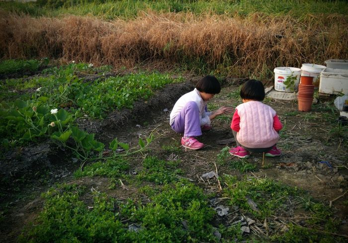Childhood Children Family Field Grass Hong Kong Outdoors Playing Color Of Life Colour Of Life Color Of Life! My Favorite Place