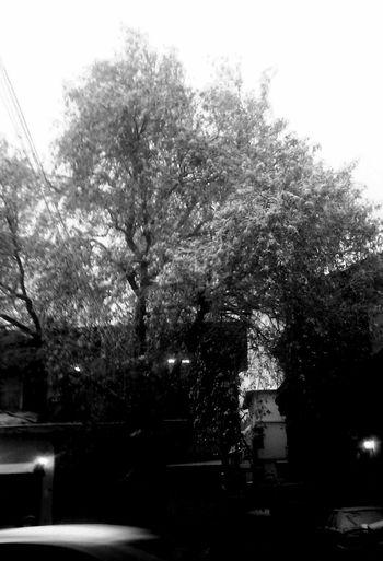 Streetphoto_bw Black & White Black And White Antioch Blackandwhite Blackandwhite Photography Black&white Bnw Monochrome Kubratemli