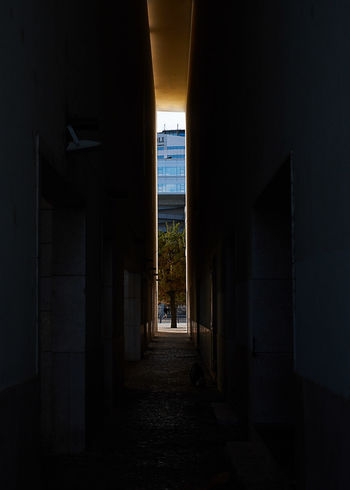 Alley in Lisbon Architecture Built Structure City Building Direction The Way Forward Building Exterior Day Outdoors No People Nature Street Sunlight Footpath Narrow Alley Dark Shadow Diminishing Perspective Architectural Column Skyscraper