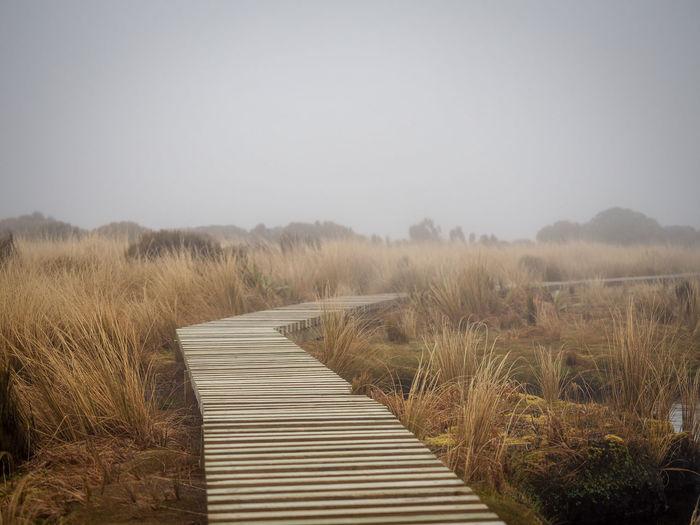 Boardwalk on field against clear sky
