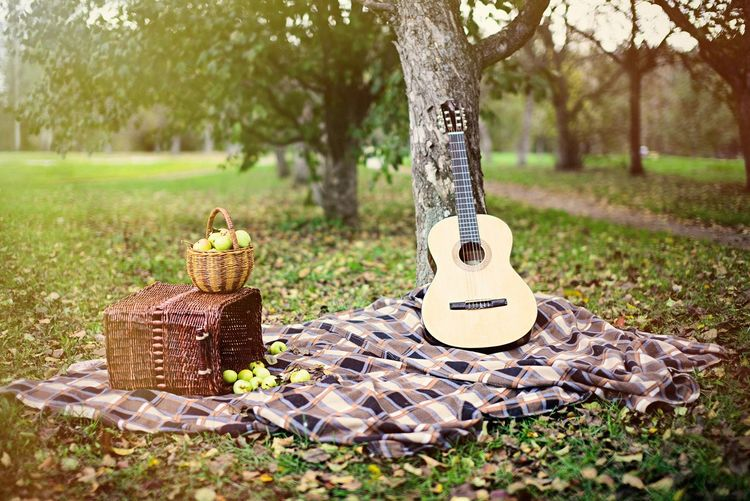 Guitar By Fruit Baskets In Park