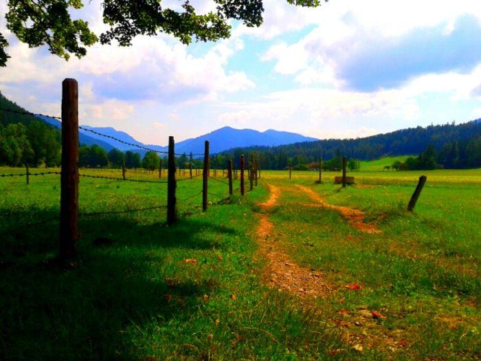 Enjoy :3 Natur Landschaft Weg Enjoy The Nature