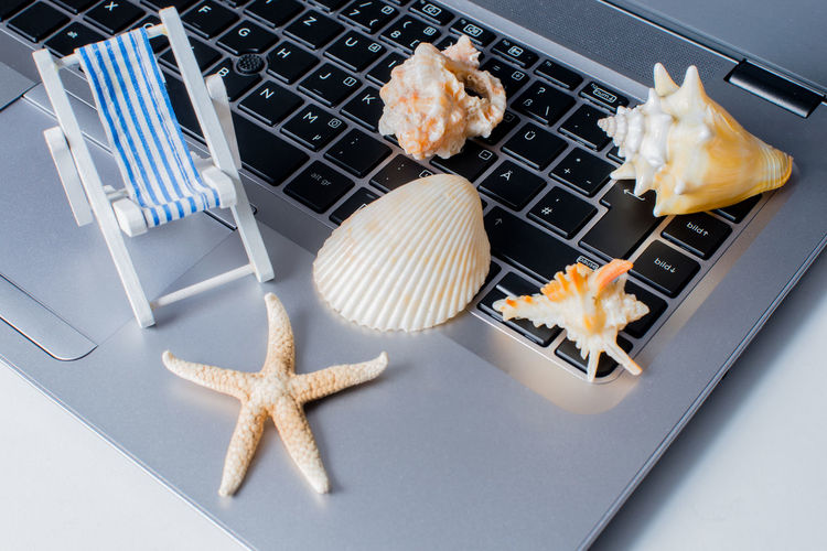 Shells and holiday mood Online booking on a notebook Burnout Holiday Travel Wellness Word Accessory Booking Concept Exhaustion Flat Lay Holiday Mood Job Leisure Macro Notebook Online  Relax Relaxation Shells Time Out Vacation