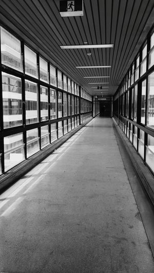 """""""That corridor"""" 