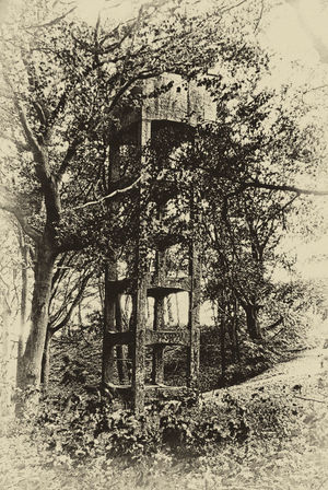 The mysterious tower Architecture Bare Tree Built Structure Day Deterioration Forest Grass Growing Growth Military Mysterious Mystery Nature No People Old Outdoors Plant Rural Scene Second World War Sky Time Machine Tower Tranquility Tree Vintage An Eye For Travel