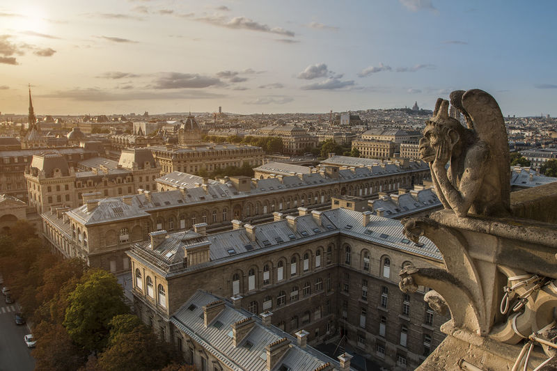 Gargoyle sculpture on notre dame de paris in city during sunset