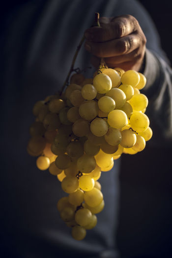Close-up of hand holding grapes over black background