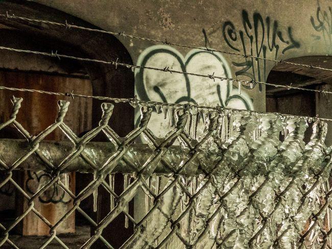 EyeEm Best Shots EyeEmNewHere Oldmontreal Barbed Wire Ice Urbanphotography Urban Lightroom FZ300