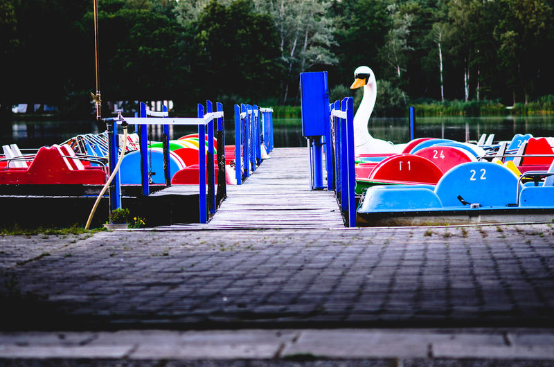 Swan Multi Colored Water Tree Pedal Boat Outdoor Play Equipment