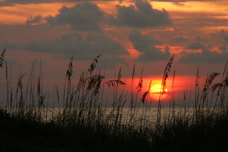 Scenic view of beach grass and lake against sky at sunset