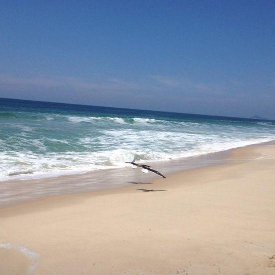 """Beach Natural Love Birds EyeEm Best Shots The Purist (no Edit, No Filter) """"é melhor que sejam dois do que um"""""""