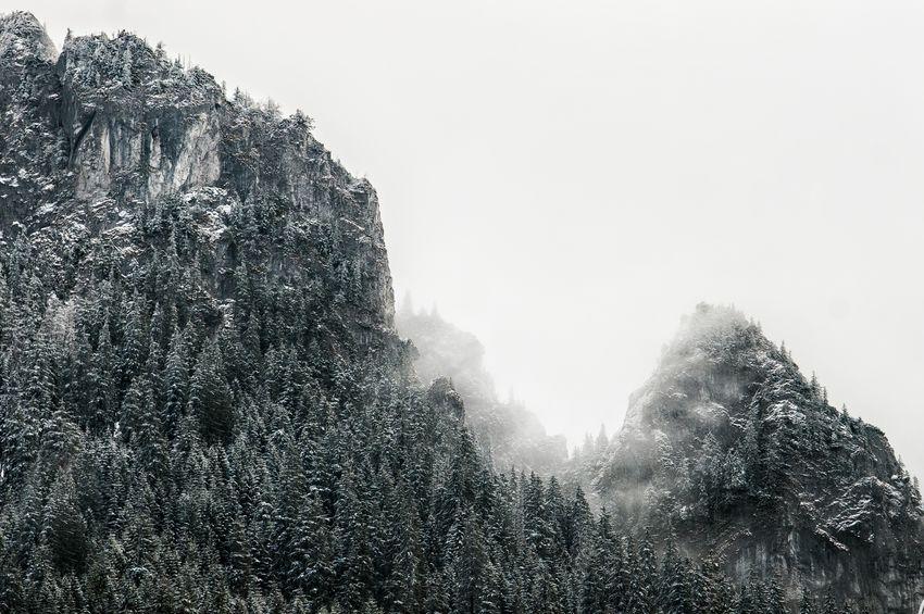 Kościeliska Valley Dolina Winter Snow