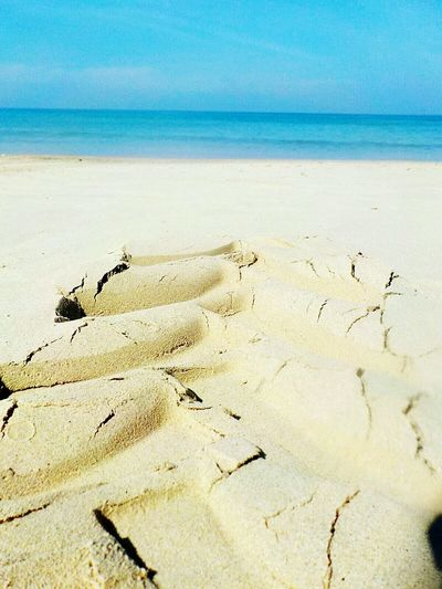 Beach Sand Sea Horizon Over Water Nature Scenics Tranquility Outdoors Water Vacations Beauty In Nature Tranquil Scene No People Day Sky Traces In The Sand Horizon Over Sea Phuket,Thailand Close Up Low Angle View Amazing Thailand
