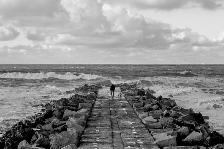 Rear view of man with dog by sea against sky