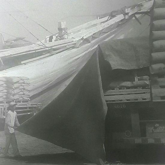 """Capturing original picture (Kompas/Totok Wijayanto) on page 18th of Kompas Daily Newspaper had titled """"Mengangkut Semen"""". Pekerja Membongkar Terpal"""