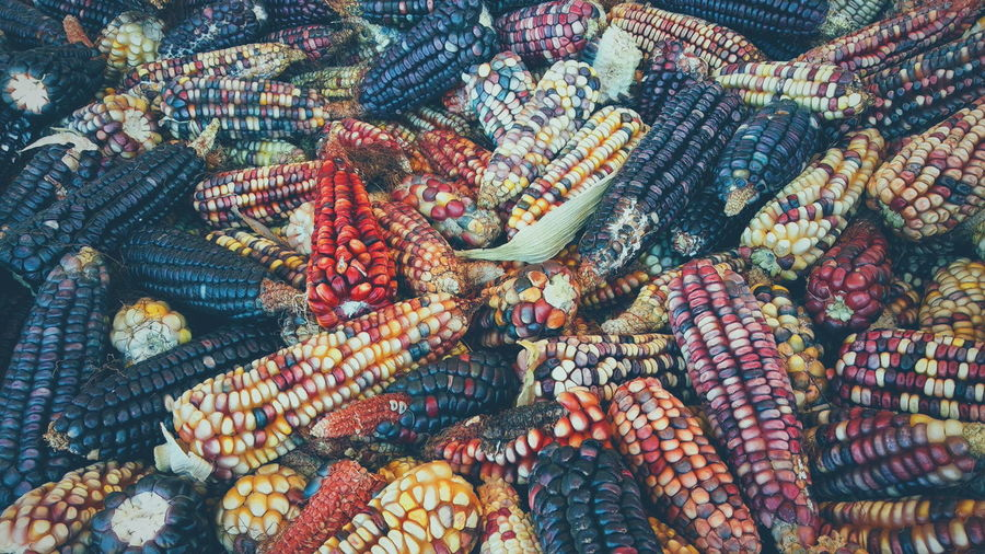 Full frame shot of maize for sale in market