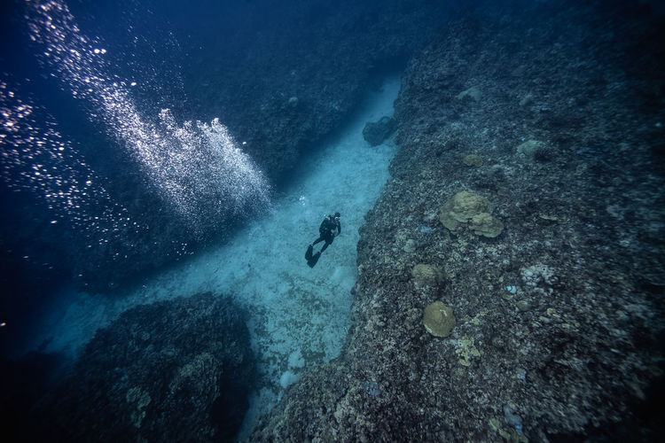 High angle view of scuba diver swimming undersea