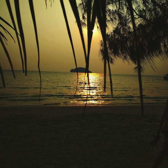 Romantica de la niche Sunsetive Cambodia Shanti Elparaiso Beach Sea Water Nature Tree Sunset Horizon Over Water Beauty In Nature Silhouette Tranquil Scene Palm Tree Sand Sky EyeEmNewHere