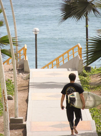 Back Look Back View Day Full Length Lifestyles Men One Person Outdoors People Sea Surf Surfer Walking Young Live For The Story
