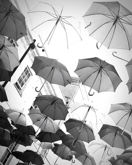 Rain or shine a brolly comes in handy Rain Or Shine Brolly Brollies Blackandwhite IPhoneography