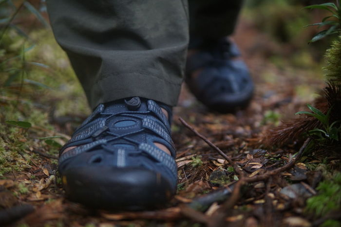 hiking shoes over the trail ready for advanture Hikingadventures EyeEm Selects Group Of People Hiking Group Advanture Outdoors Hiking Photography Nature Photography Outdoor Photography Beauty In Nature Hiking Trail Low Section Men Forest Standing Human Leg Leg Hiking City Shoe Walking Sole Of Shoe Tree Area Foot Hiker Sports Shoe