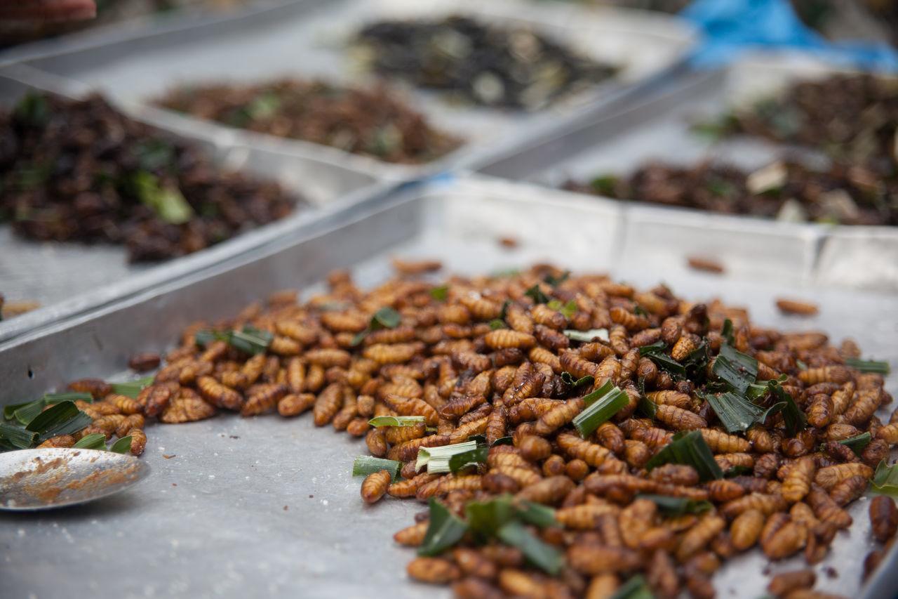 Deep fried larvae