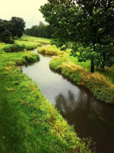 Landshut Summer Nature Water Reflections