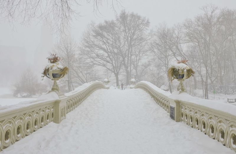 Snow Covered Footbridge Against Bare Trees In Central Park