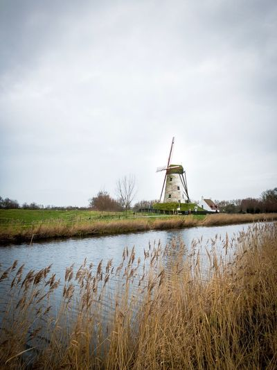 💨⚡️ Canal Langerei Damme Belgium Shotoniphonex Wind Power Renewable Energy Alternative Energy Lake Water Windmill Wind Turbine Traditional Windmill Outdoors Tranquility Grass No People Architecture Landscape Cloud - Sky Day Shades Of Winter