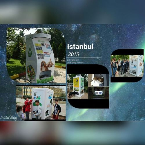 These Recycling machines in Istanbul leave food for Homeless Animal when one drops a Plasticbottlesin the recycle Malaysiashould have this too. Dogs Cats Paws Feline
