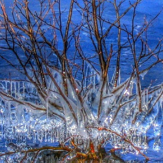 Ice Art Is Konst sjö lake ånimskog dalsland lunnevika rogivande vinter winter